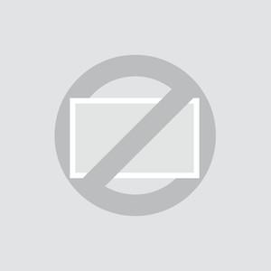 19 Zoll Monitor Metall